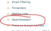 SPAMs without SpamAssassin
