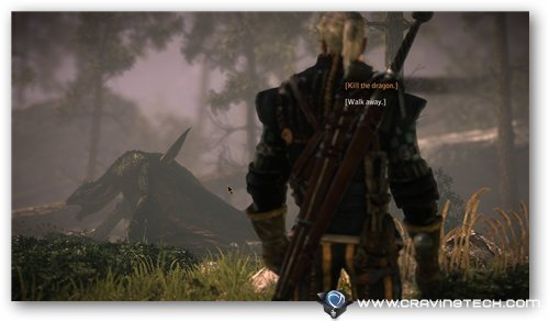 Witcher 2 kill dragon