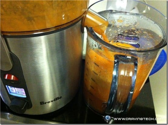 Breville ikon Froojie Review - to mug