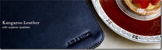 Aranez iPad 2 case