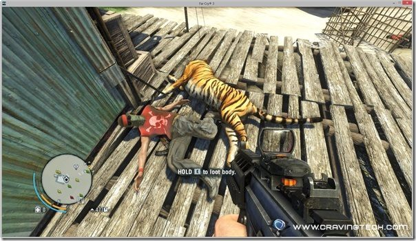 Tiger and enemy dead