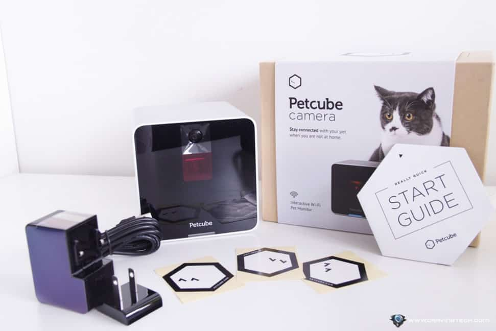 Petcube Review-5