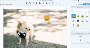 Snagit 2019 Stamp search