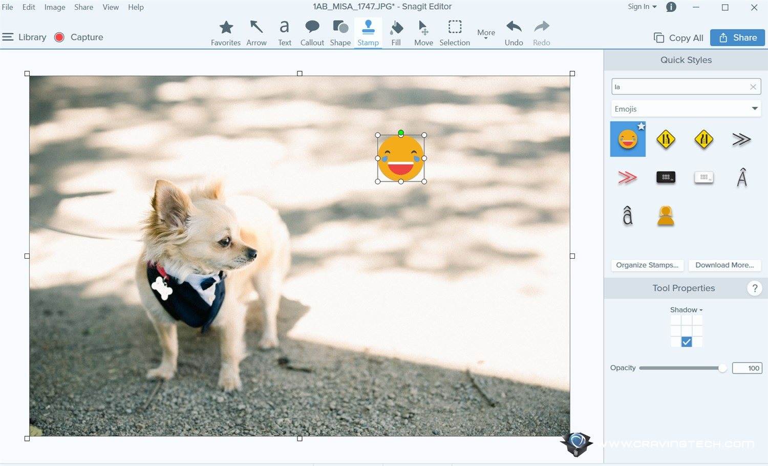 A step upgrade from Snagit 2018 – Snagit 2019 Review